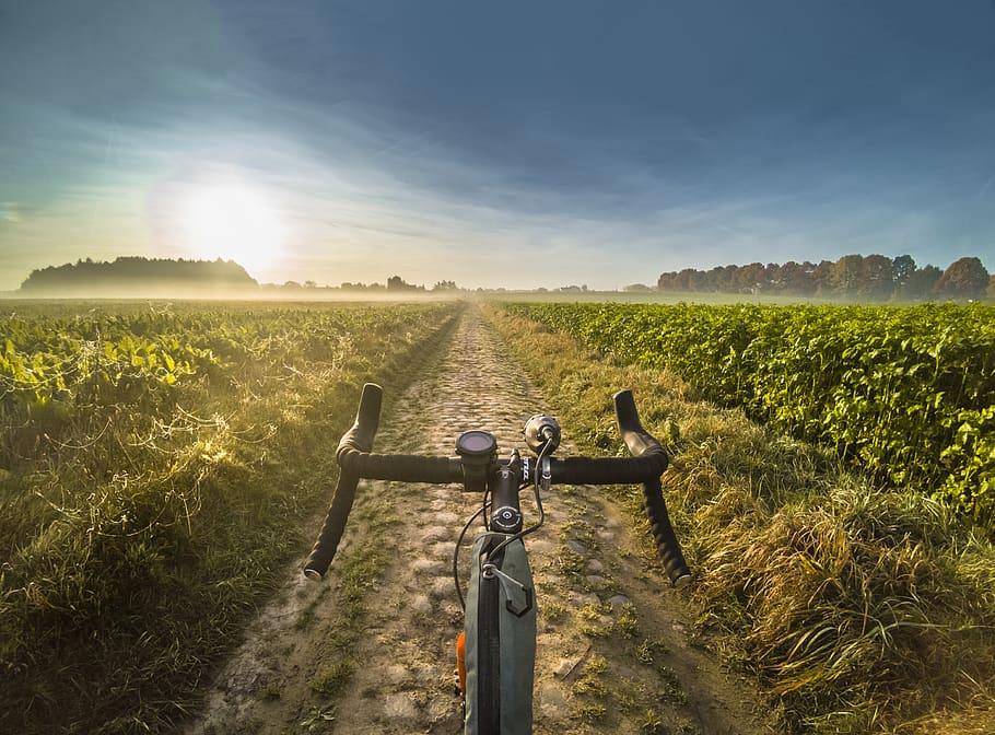 imagen bicicleta gravel